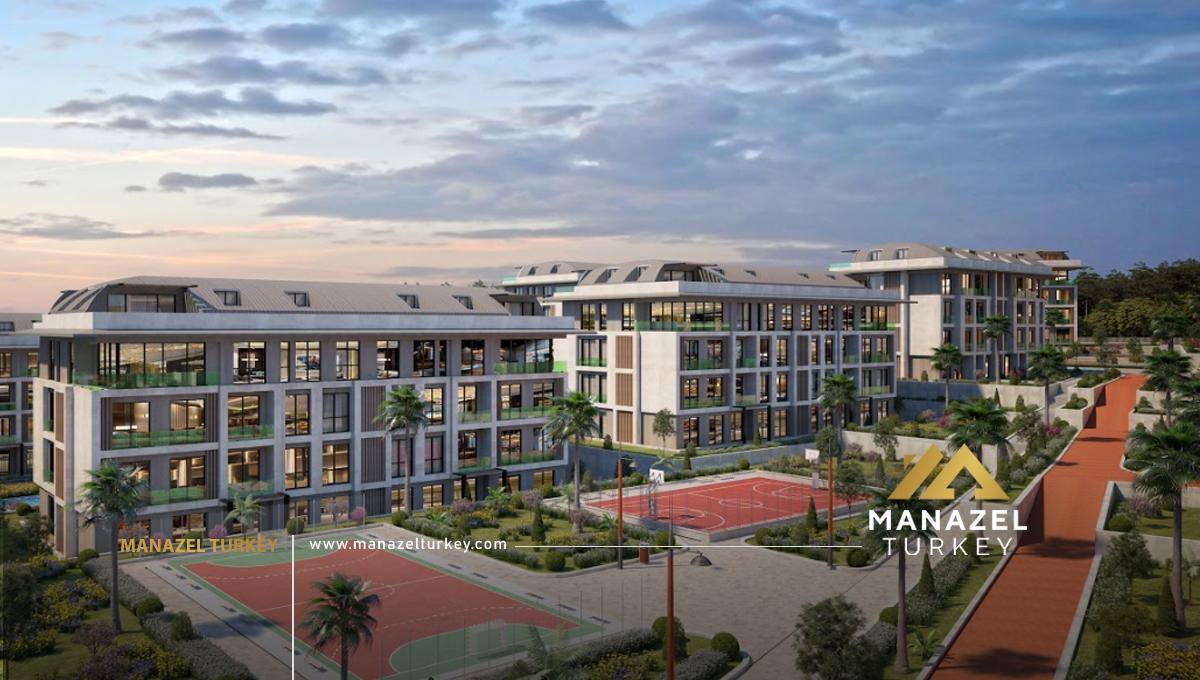 Palm Marin (8)